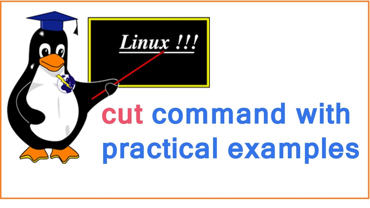 8 Cut Command Using With Shell Scripting Practical Examples